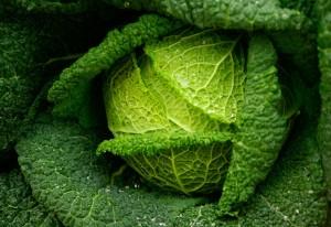 verde-magnesio