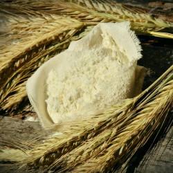 farina-glutine